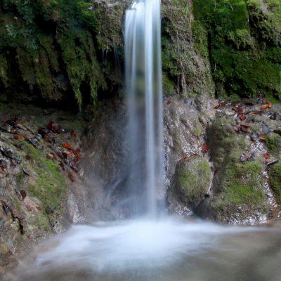 Banjski Potok - Lucani 04